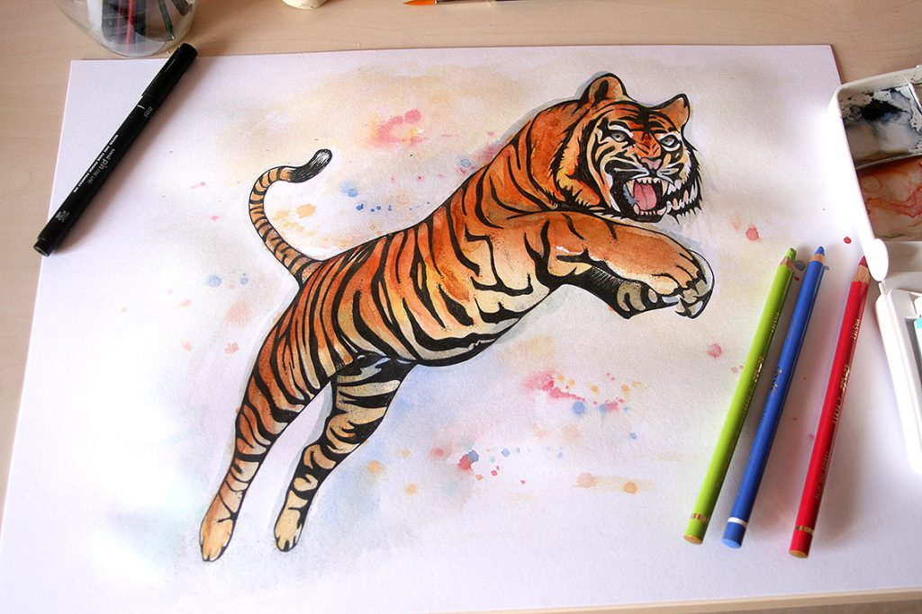 Tigre en color